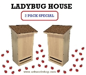 Ladybug House 2 PACK Autumn Brown Roof