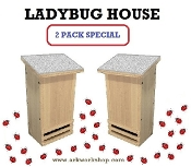 Ladybug House 2 PACK Light Gray Roof