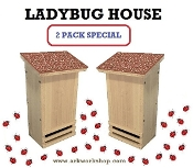 Ladybug House 2 PACK Canyon Red Roof